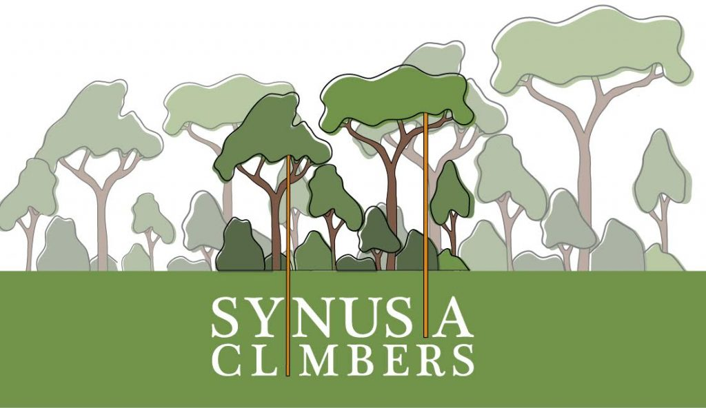 Synusia Climbers